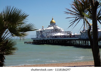 looking at Eastbourne pier between the palm trees.