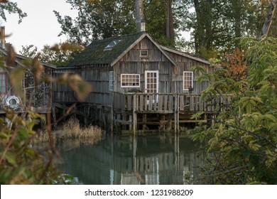 Looking at a Finn Slough house through the bushes