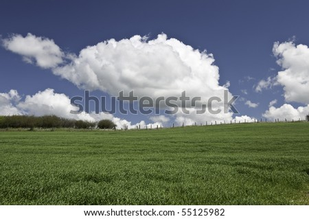 Looking up hill to the fence line and big white clouds above.