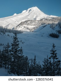 Looking into the White River valley on Mt. Hood during the winter morning on a blue sky day with frost covered trees.