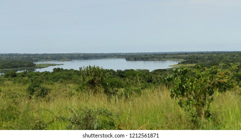 Looking out across a green jungle at the Nile river start in Murchison Falls National Park, Uganda