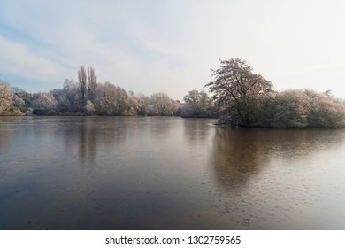 Looking out across a shallow frozen lake surrounded by frost covered trees and bushes on a bright, cold winter morning