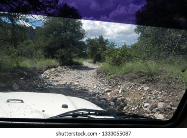 Looking out car window to unpaved road