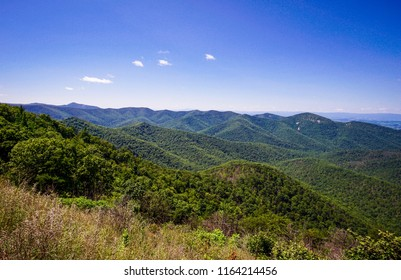 looking out over shenandoah forest