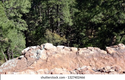 Looking out over the tree tops from the top of a cliff; Mogollon Rim in Apache-Sitgreaves National Forest in Arizona