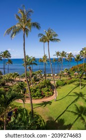 Looking out upon the crystal blue Pacific Ocean and towering palm trees of Ka'anapali Beach, located in Lahaina, Hawaii on the island of Maui.