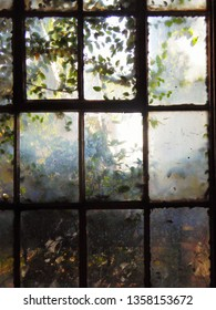 Looking out of the window of an old house to the overgrown garden beyond