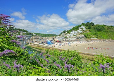 Looking over a Buddleja shrub towards Looe Harbour entrance, Banjo Pier, and the beach in East Looe with holiday makers enjoying the summer sun, Cornwall, England, UK