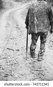 Looking over the shoulder of a truffle hunter out on a hunt.