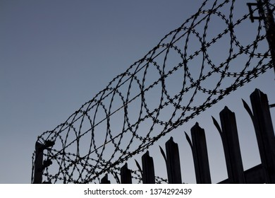 Looking up at razor wire fencing against a clear blue grey sky