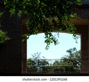 Looking through a backlit brick archway with black iron railings and leafy foliage in foreground, shallow depth of field.
