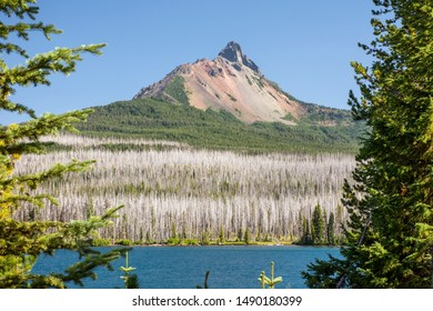 Looking through trees at Oregon's Mt. Washington, a volcano in the Cascade Range, on a clear, blue-sky day. Big Lake and surrounding forest in foreground