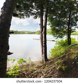 Looking through the trees at a tranquil and peaceful lake or pond in North America.