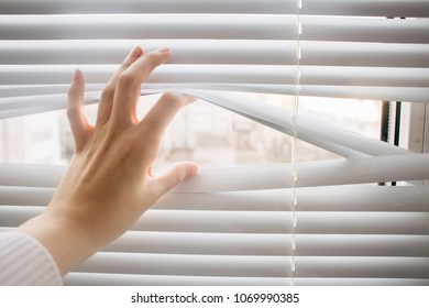 Looking through window blinds to new life and hope , bright business ideas and concepts