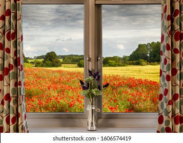 Looking through a window onto a poppy field in spring. Rural scene from inside a home.