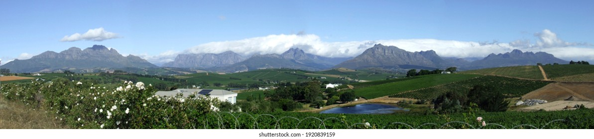 Looking towards Simonsberg and Hottentots-Holland mountains, Stellenbosch, Western Cape, South Africa