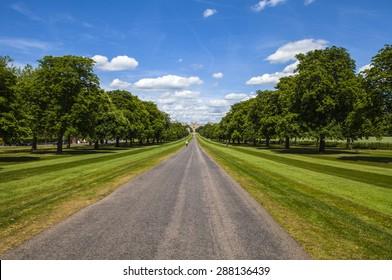 Looking towards Windsor Castle from The Long Walk in Berkshire, England.