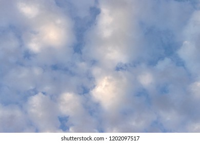 Looking Up At White puffy clouds in a blue sky