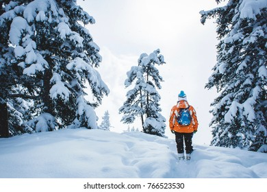 Looking at the winter