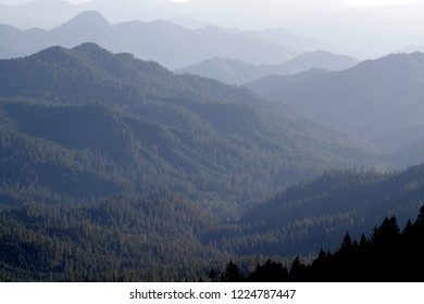 Lookout Creek drainage, from Carpenter Mountain fire lookout, H.J. Andrews Experimental Forest, Willamette National Forest, Oregon, USA