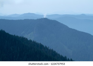 Lookout Mtn waterdog from Carpenter Mtn fire lookout, H.J. Andrews Experimental Forest, Oregon, USA