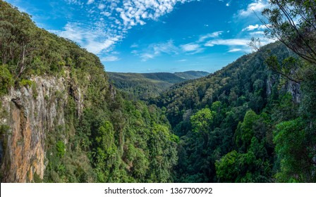 Lookout from the top of Purling Brook Falls, Springbrook National Park, Queensland, Australia