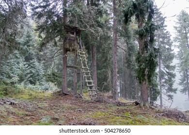 Lookout tower for hunters in the forest