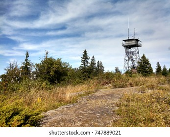 Lookout tower on an island in the woods - Shutterstock ID 747889021
