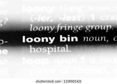 loony bin word in a dictionary. loony bin concept.
