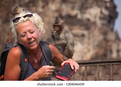 Monkey Attack Images, Stock Photos & Vectors | Shutterstock
