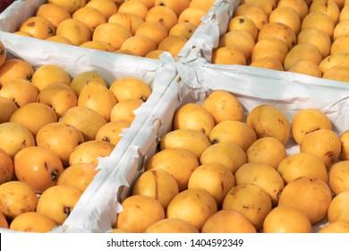 Loquat fruit or Japanese medlars on crates at farmers market. Eriobotrya japonica