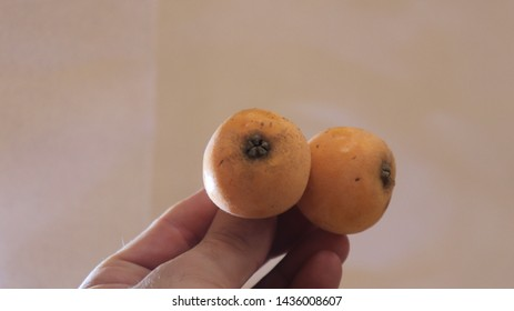 loquat Japanese fruit is yellow Between the fingers Hand