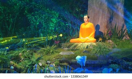 The Lord Buddha is meditating.