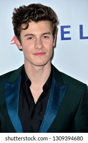 LOS ANGELES, CA. February 08, 2019: Shawn Mendes at the 2019 MusiCares Person of the Year Gala honoring Dolly Parton at the Los Angeles Convention Centre.Picture: Paul Smith/Featureflash