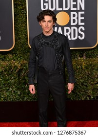 LOS ANGELES, CA. January 06, 2019: Timothee Chalamet at the 2019 Golden Globe Awards at the Beverly Hilton Hotel.