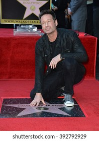 LOS ANGELES, CA - JANUARY 25, 2016: Actor David Duchovny on Hollywood Boulevard where he was honored with the 2,572nd star on the Hollywood Walk of Fame.