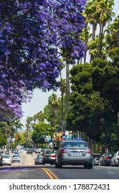LOS ANGELES, CA -  MAY 27, 2013: Cars driving on a street with flowering trees and palm trees in a sunny day