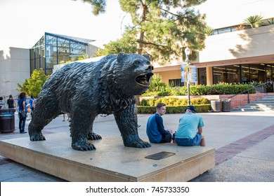 Los Angeles, CA: October 20, 2017: Bruin Bear on the UCLA campus. UCLA is a public university.