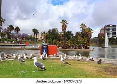 Los Angeles, California - May 16, 2019: view of MacArthur Park located in the Westlake neighborhood of Los Angeles