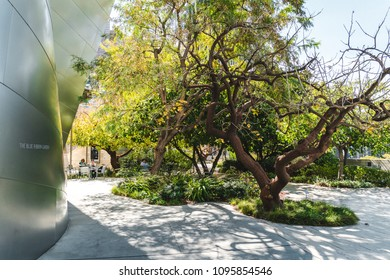 Los Angeles, California / USA - March 2018: The blue ribbon garden on the roof terrace of the Walt Disney Concert Hall is one of the hidden gems of public space in Downtown LA.