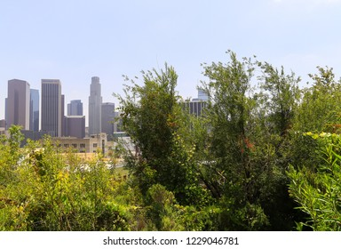 LOS ANGELES, CALIFORNIA, USA - MAY 30, 2017: View of some tower buildings in Downtown Los Angeles. Photographed in the Vista Hermosa Natural Park. In the foreground are some bushes.