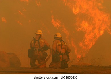 Los Angeles, California/USA - Nov 15, 2008 - Los Angeles County firefighters  fight the Sayre Fire burning in the Granada Hills section of Los Angeles.