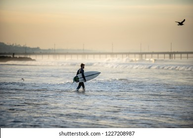 Los Angeles, CA/USA - November 4, 2018: Surfer walks from beach into ocean holding surfboard in early morning light. It was the first morning after daylight savings, creating daylight an hour earlier
