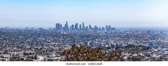 Los Angeles city skyline seen from Griffith Park in Los Angeles California.