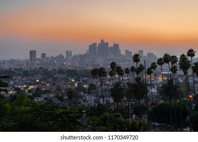 Los Angeles downtown buildings skyline evening