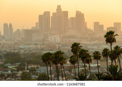 Los Angeles downtown evening skyline