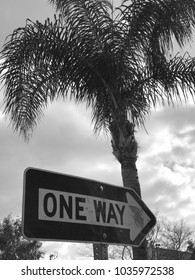 LOS ANGELES, FEB 28th, 2018: Black and White close up of a One Way road sign underneath a palm tree, pointing towards a dark, cloudy sky.