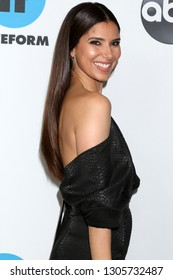 LOS ANGELES - FEB 5:  Roselyn Sanchez at the Disney ABC Television Winter Press Tour Photo Call at the Langham Huntington Hotel on February 5, 2019 in Pasadena, CA