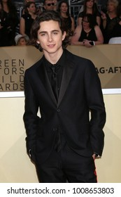 LOS ANGELES - JAN 21:  Timothee Chalamet at the 24th Screen Actors Guild Awards - Press Room at Shrine Auditorium on January 21, 2018 in Los Angeles, CA