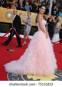 LOS ANGELES - JAN 30:  Angie Harmon arrives at the the SAG Awards 2011 on January 30, 2011 in Los Angeles, CA
